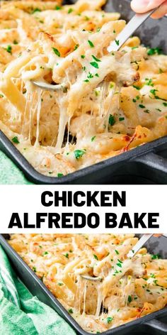 Penne tossed with creamy alfredo sauce, chicken, and (a lot) of mozzarella. Best… Penne tossed with creamy alfredo sauce, chicken, and (a lot) of mozzarella. Baked Penne, Baked Chicken, Alfredo Recipe, Alfredo Sauce, Homemade Chicken Alfredo, Chicken Penne Alfredo, Chicken Mozzarella Pasta, Chicken Pasta Bake, Pollo Alfredo