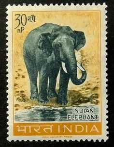 Indian Elephant India 14382PAG by PassionGiftStampArt on Etsy, $25.90