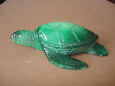 Coleção Apolar de tartaruga. #apolarimoveis