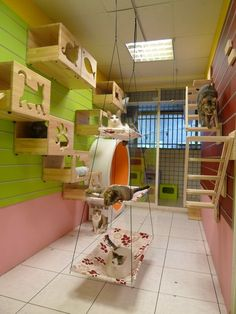 Cat room ideas that transform your walls into cat playgrounds. Works in small sp… Cat room ideas that transform your walls into cat playgrounds. Works in small spaces. Animal Room, Cat Play Rooms, Cat Climbing Wall, Cat Playground, Playground Ideas, Cat Shelves, Cat Enclosure, Outdoor Cats, Outdoor Rooms