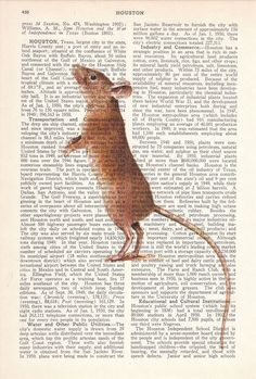 house mouse solo flight paper crafts pinterest house mouse mice and products - Prints On Old Book Pages