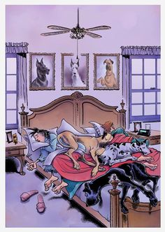 looks like my house but our dogs are small and still take up most of the bed!!!