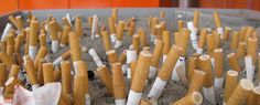 "This company recycles cigarette butts and turns them into plastic  ""We haven't found anything that we can't recycle."""