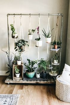 Home Design And Decor Ideas And Inspiration Hanging Herb Garden. Home Design And Decor Ideas And Inspiration. The post Home Design And Decor Ideas And Inspiration appeared first on DIY Shares. How to create an indoor hanging herb garden. Idea: hang from Hanging Herb Gardens, Hanging Herbs, Vertical Herb Gardens, Hanging Plant Diy, Balcony Hanging Plants, Small Balcony Decor, Diy Hanging Shelves, Balcony Ideas, Hanging Basket