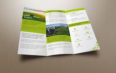 Invest in Moldova - Investment Attraction Team Branding on Behance