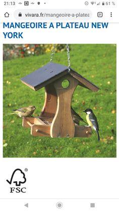 Bird, Outdoor Decor, House, Home Decor, Gardens, Feed Trough, Tray, Decoration Home, Home