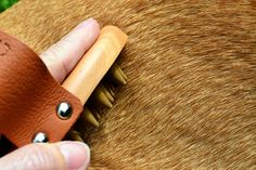 Curry combs are a great way to remove shed fur from short-haired dogs and cats...and it's as easy as just petting! With soft rubber teeth, this grooming tool gently removes loose hair. Priced at just $4.99 at #TuesdayMorning, compared to $9.99 at other stores.