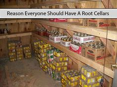 Reason Everyone Should Have A Root Cellars - LivingGreenAndFru. Homestead Survival, Survival Prepping, Emergency Preparedness, Survival Stuff, Survival Skills, Food Storage Organization, Storage Room, Vegetable Storage, Homestead Gardens