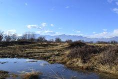 La Baraggia in una pozzanghera. Italia.Biella.Benna.Baraggia.  #benna #biella #primavera #calluna #baraggia