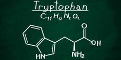 トリプトファン Spirulina, Trouble Anxieux, Pineal Gland, Smoking Cessation, Stress, Growth Hormone, Healthy Sleep, Neurotransmitters, Bipolar Disorder
