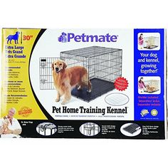 Petmate Home-Training Wire Dog Kennel ** Insider's special review you can't miss. Read more  : Dog kennels