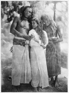 Ceylon. 1878
