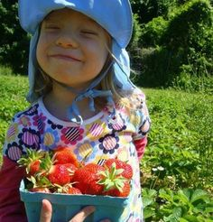 10 local u-pick strawberry farms