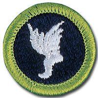 50 best merit badge activities images on pinterest scouting athletics merit badge fandeluxe Images