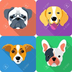 Set Dog Icon Flat Design - Jack Russell Terrier, French Bulldog ...