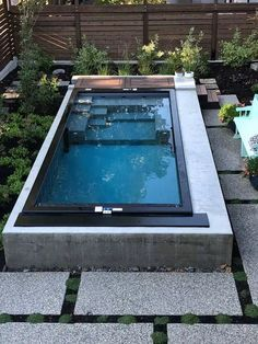 Shipping Container Swimming Pool, Small Swimming Pools, Small Pools, Swimming Pools Backyard, Swimming Pool Designs, Pool Landscaping, Indoor Swimming, Florida Landscaping, Lap Pools