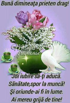 Imagini buni dimineata si o zi frumoasa pentru tine! - BunaDimineataImagini.ro Plants, Free Pattern, Plant, Planets