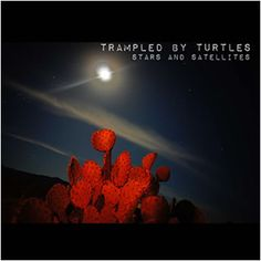 Trampled By Turtles - Stars and Satellites;  I bought this album based solely on the name of the band.  I love it when I find a great band like this.  I highly recommend!