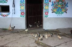 Nesta vila polonesa, todas as casas são pintadas com desenhos de flores coloridas – Nômades Digitais