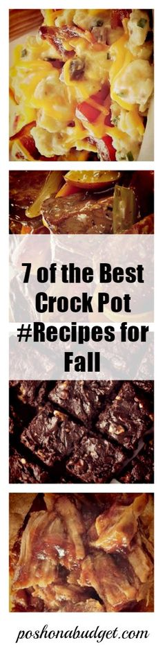 7 of the Best Crock Pot #Recipes for Fall
