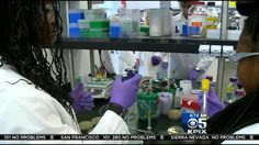 iCLEM 2014 feature on local CBS San Francisco station, KPIX!