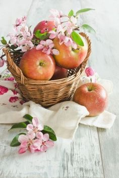 apples and blossoms.  Ana Rosa