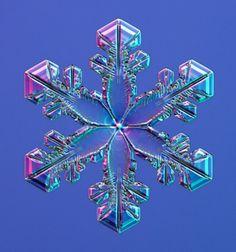 Fiocchi di neve visti al microscopio - Snowflake - Moebius on line