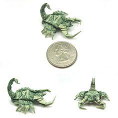 """New pics. Dollar Scorpion"" by ~orudorumagi11 // Wow so small and so beautiful!"