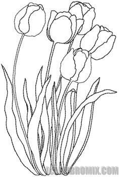 redwork flower designs   Flowers and Nature - Redwork Flowers - Tulip - Embroidery Designs at ...