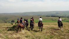 Horse Riding on Dartmoor - Visit Dartmoor