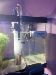 Diy freshwater filtration sump tank youtube aquarium for Homemade skimmer filter