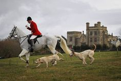 Oxford England, Fox Hunting, Equestrian, Horses, Pets, Chair, Country, Places, Animals