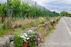 facile et beau - Gusta: Natur in Eguisheim (Elsass)
