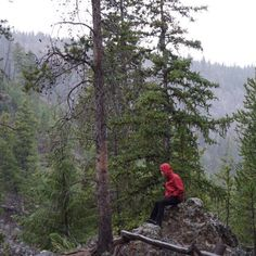 A boy in the forest. It looks like some Northwest US drippy location, but it was actually just a rainy day at Yellowstone National Park in Wyoming. We all loved it there, no matter what the weather.