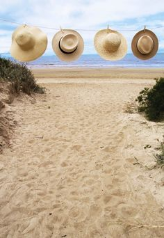 Sun Hats at the Beach