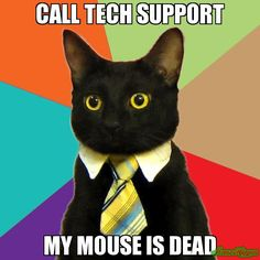 This week's career memes drop back in on technical support. If you think the job of tech support staff consists of turning computers off and on, think again.