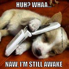 Funny Memes: Naw I'm Still Awake!