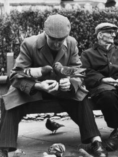 Shirley Baker: Feeding the Pigeons - Manchester, 1967 Shirley Baker, Baker Image, Bird People, Street Gallery, Street Portrait, Salford, Galleries In London, Street Photographers, Working Class