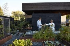 The Birdhouse Modern Home in Napa, California by Hugh Newell Jacobsen on Dwell