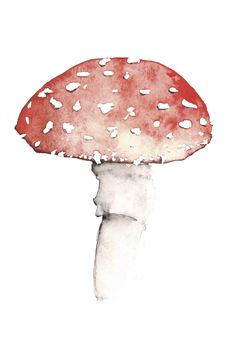 Fly agaric – Watercolor Poster #flyagaric #mushroom #fliegenpilz #aquarell #dawanda