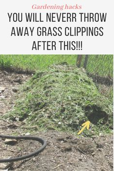here are 9 reasons Why You'll never throw away grass clippings! My Backyard Garden | April 14, 2020garden ideas, gardening ideas, gardening for beginners, gardening design, gardening tools, gardening hacks, gardening and landscape, gardens and gardening ideas #gardening #gardenhacks #gardeningideas