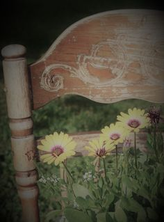 Daisies on an old chair Everyday Items, Daisies, Wreaths, Make It Yourself, Chair, Flowers, How To Make, Photos, Painting