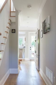COLOUR SPOTLIGHT – Benjamin Moore Collingwood | ROWE SPURLING PAINT COMPANY