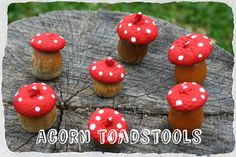 Twig and Toadstool: Acorn Toadstools!  http://twigandtoadstool.blogspot.com/2012/05/acorn-toadstools.html