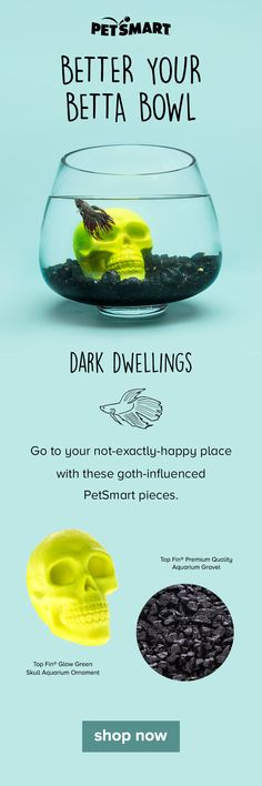 """Do you find beauty in all things """"dark?"""" Go to your dark place with these gothy PetSmart pieces for your betta bowl or aquarium. Fish Aquariums, Aquarium Fish, Aqua Decor, Aquarium Ornaments, Fish Tanks, Betta Fish, Just Amazing, Pointers, Bowls"""