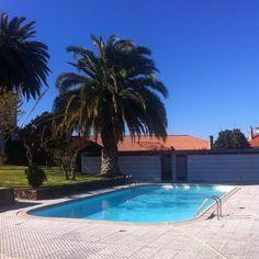 #solardechacim #portugal #chacim #trasosmontesportugal #trásosmontes #relax #piscina #piscinas #primavera #macedodecavaleiros #swimingpool #palmeiras by solardechacim