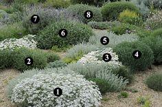 Amazing Mediterranean Garden Design Ideas 10
