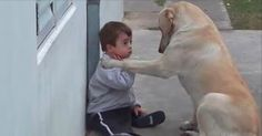 World's Sweetest Dog Befriends Child with Down Syndrome -Jess Explains It All  http://jessexplainsitall.com/worlds-sweetest-dog-befriends-child-with-down-syndrome/