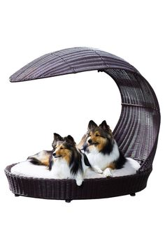 Pet bed with arched shade // awesome! #designer_pet