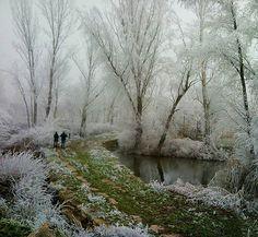 Zamora :hace unos días  #estaes_zamora #estaes_natura #meteobaixllobregat #loves_meteo #be_one_natura #total_nature #ig_estradas #loves_nature #estaes_castillaleon #world_shotz #world_shots #espacio_spain #great_capture #great_capture_spain #asi_es_natura #photo_storee #instantes_gf #todo_tumundo #ok_mencionados #ok_nature #naturaleza_spain #naturalezaviva #9vaga_nature9 #naturaleza_castillayleon #fever_natura #ig_nature #almostperfect_seasons